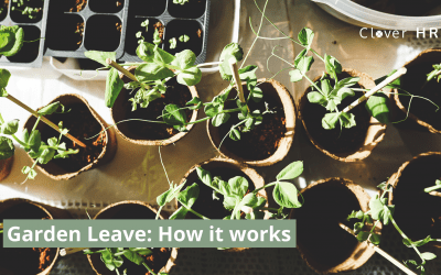 Garden Leave – Guide to How it Works