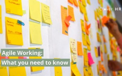 Agile Working: The Complete Guide to Employers