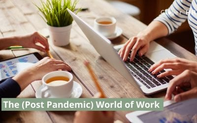 The (Post Pandemic) World of Work