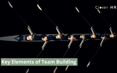 What are the key elements of team building?
